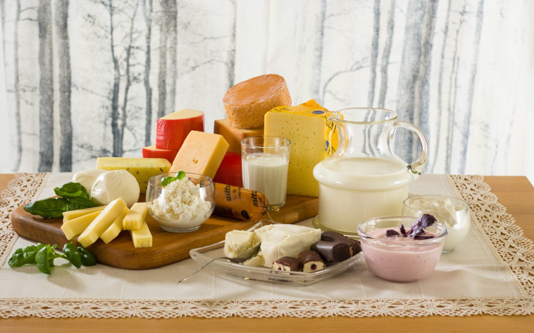 Augustis toimub infopäev piima ja piimatoodete ohutust ja kvaliteeti mõjutavatest teguritest