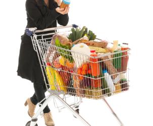 Toidu lisaainete kasutamist käsitlev teabematerjal